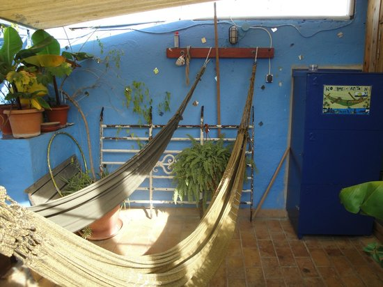 Casa Caracol: more rooftop hammocks
