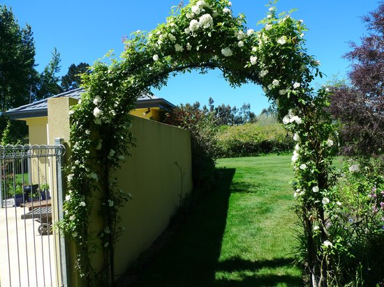 Clearview Lodge: Beautiful Rose Arch