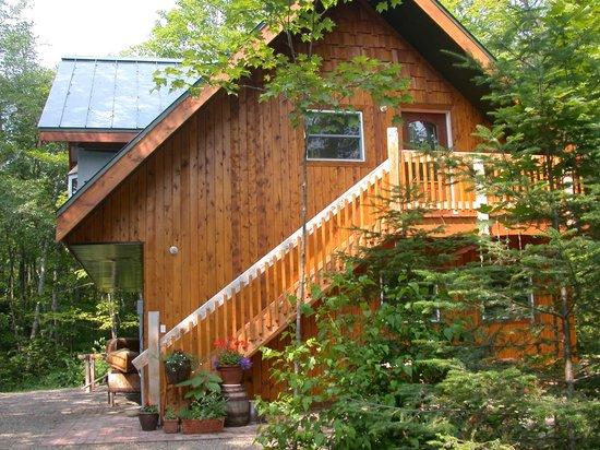 Bellevue Valley Lodge B&B