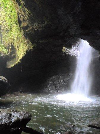 Hostal Selva y Café: Cave of Splendor