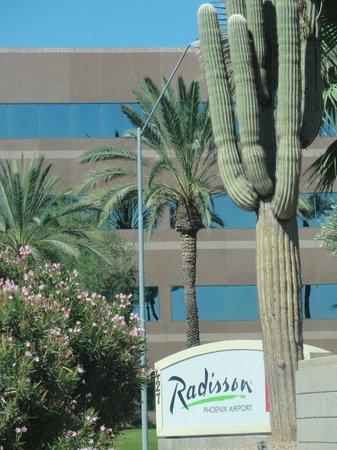 Radisson Hotel Phoenix Airport : Radisson Phoenix