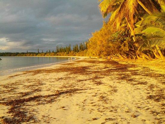 Hotel Kou-Bugny: Vue de la plage face au restaurant - COUCHER DE SOLEIL Baie de KUTO