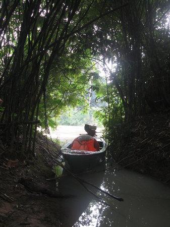 Yokdon National Park