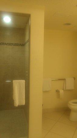 Hyatt Regency Clearwater Beach Resort & Spa: Huge Walk in Shower and Separate Tub!