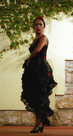 Tablao Flamenco Cardenal : l'intensité du sentiment