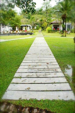 The Mangrove Panwa Phuket Resort : Hotel Garden