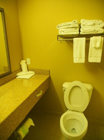 Country Inn & Suites By Carlson, Dothan : Bathroom