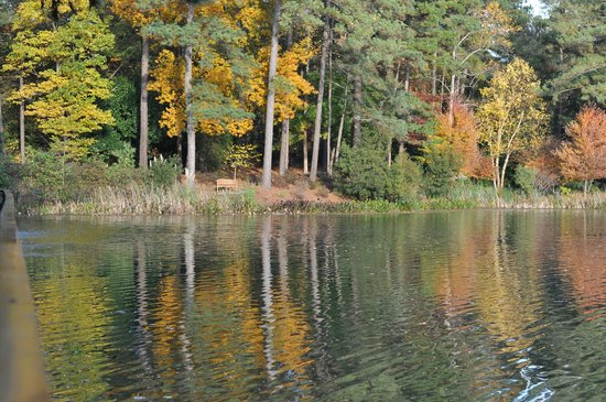 The Umstead Hotel and Spa: The lake with fall color