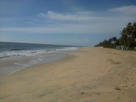 OG's Beach Bungalow