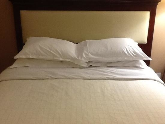 Sheraton Fort Worth Downtown Hotel : a little disappointed that the pillows on this bed seem to have seen better days