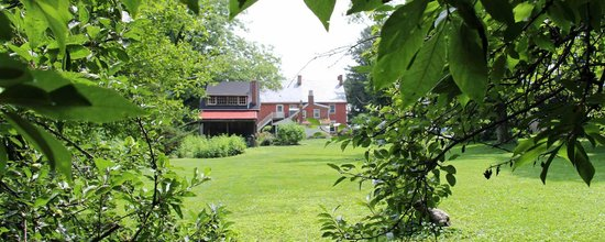 Musser's Historic Country Suites: View from the backyard