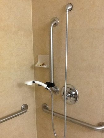 Sheraton Fort Worth Downtown Hotel : adjustable shower height and removable handle.