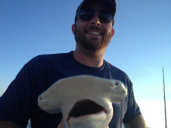 Mad Shark Charters: Bonnet head