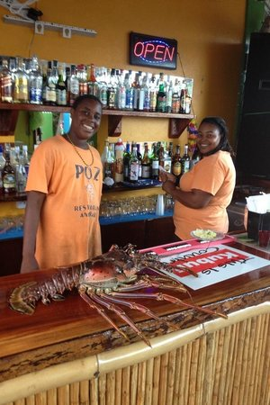 Calibishie, Dominica: Lobsters Gone Wild ! At PoZ! Delicious!