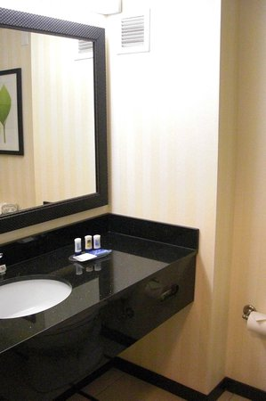 Fairfield Inn & Suites Orlando Lake Buena Vista : Washroom
