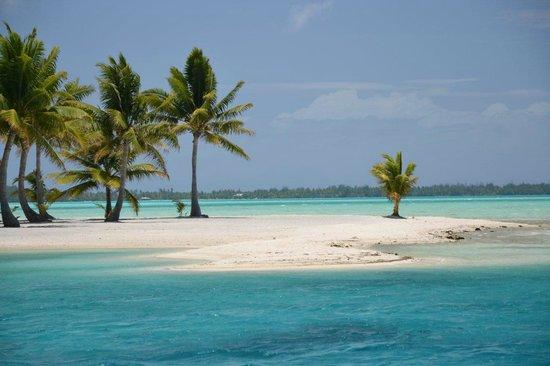 Bora Bora Photo Lagoon : Génial les couleurs