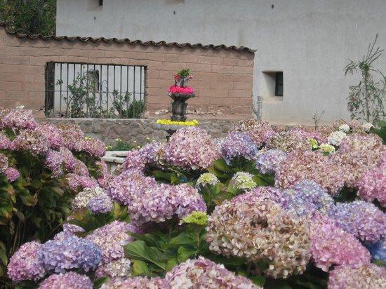 Sonesta Posadas del Inca Sacred Valley Yucay : .