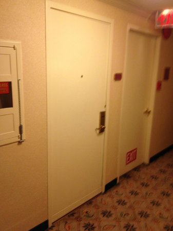 Hilton Portland Downtown : Broom closet or room door? Hard to tell
