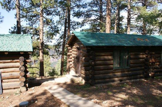 Grand Canyon Lodge - North Rim: Our cozy rim side cabin.