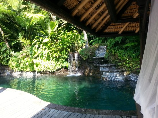 COMO Shambhala Estate: Natural spring pool