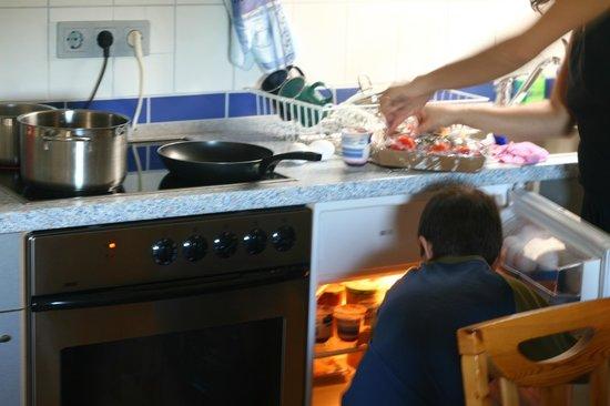 Gasthaus-Pension Reichenbächler Hof: The Kitchen