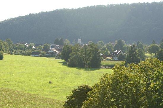 Gasthaus-Pension Reichenbächler Hof: View from the room
