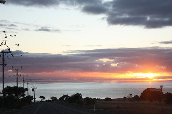 Cape Jervis Holiday Units: beautiful sunsets