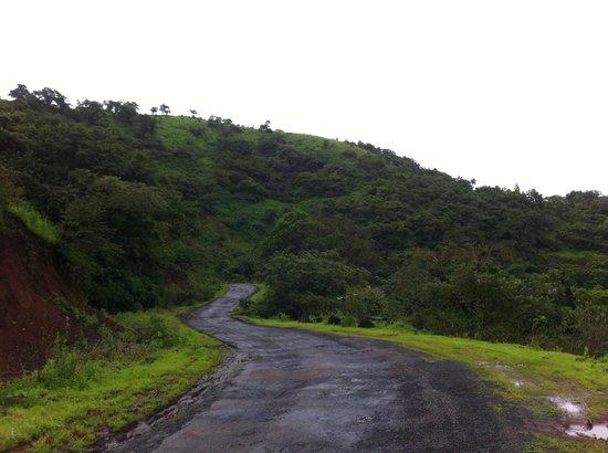 MTDC Resort, Panshet : Mountains