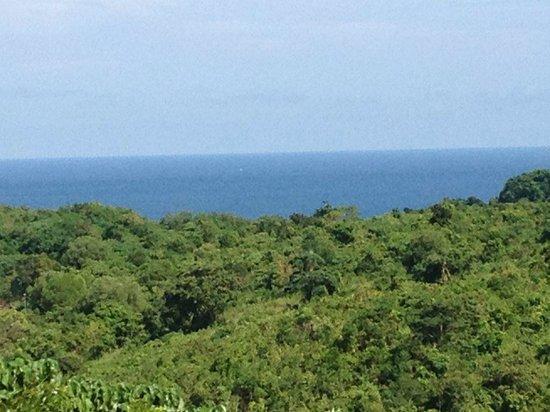 Alta Vista de Boracay: Sea view!  Though its far