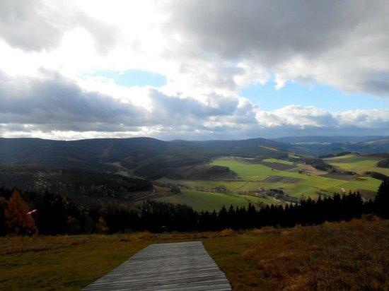 Scninkenwirt Waldhotel: Blick ins Hochsauerland
