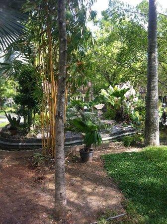 Deevana Patong Resort & Spa: Hotelpark