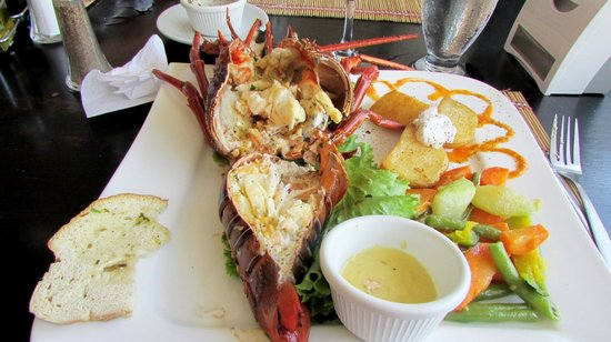 Sardinal, คอสตาริกา: Pacific Lobster - Coco Beach