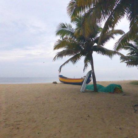 Marari Dreamz : Cocotiers et barque de pêcheur