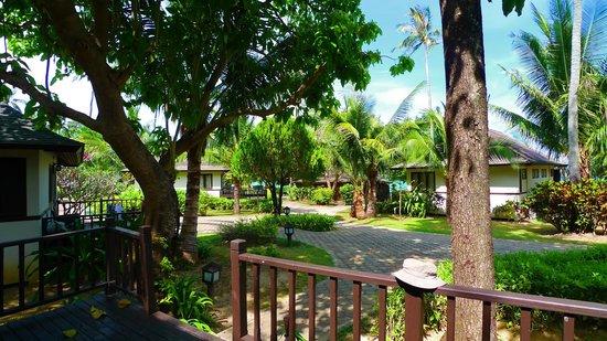 Holiday Inn Resort Phi Phi Island: Вид из бунгало 212 (вторая линия)