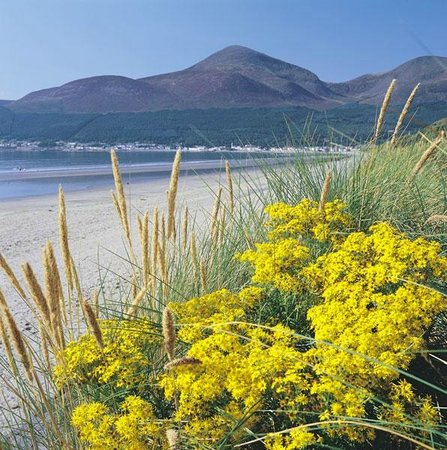 Dufferin Coaching Inn: Mournes Beach