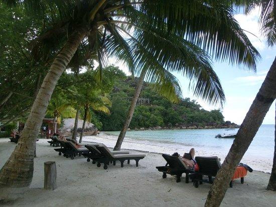 Paradise Sun: Пляжные шезлонги