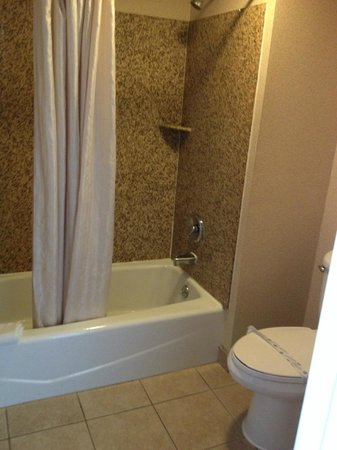 Crystal Inn Suites & Spas - LAX: Shower area