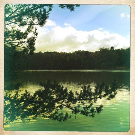 Le Mousseau : L'étang