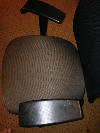 DoubleTree by Hilton Chicago - Arlington Heights: Sketchy stains on the desk chair