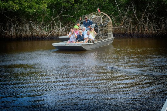 Everglades City Airboat Tours: Nice airboats
