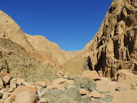 King Safari Dahab St. Catherine/Mt. Sinai Trip - Day Tours