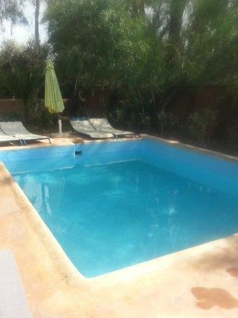 Kasbah Tiwaline: La piscina común a todas las habitaciones