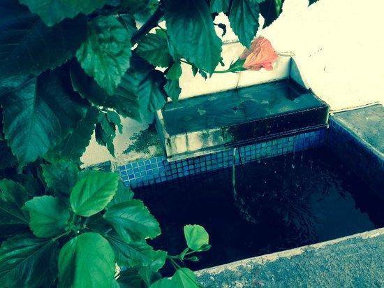 Casa do Patio by Shiadu: casa do patio - la fontaine