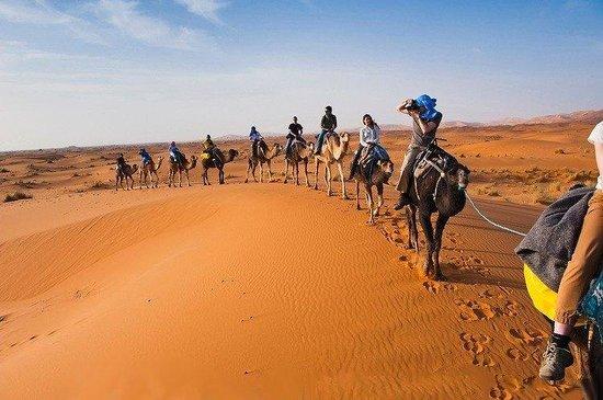 Morocco Professional Tours