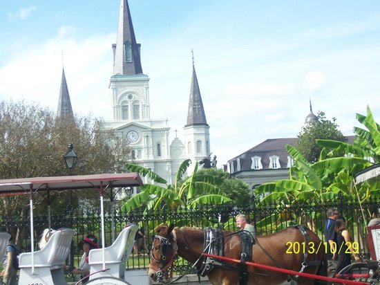 Dixie Tours New Orleans: New Orleans