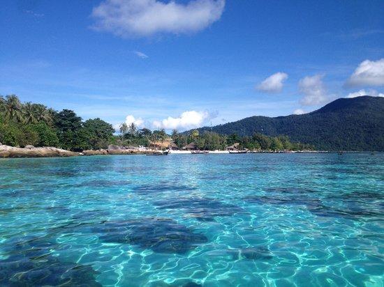 Ocean Pro Divers: Crystal Clear waters, Koh