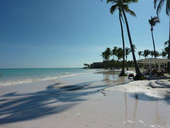 Sanctuary Cap Cana by AlSol: Playa Juanillo