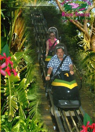 Rainforest Adventures Jamaica: Bobsled ride