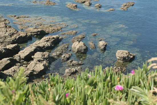 The Lizard and Kynance Cove : Crystal Clear Water at Lizard Point