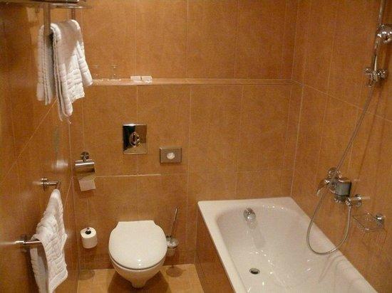 EA Hotel Sonata: Ванная комната